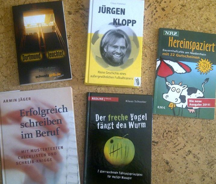 Bücher Urlaub 2011 Kühlungsborn Rezension