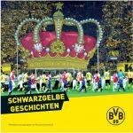 BVB Cover Buchkritik Rezension Schwarzgelbe Geschichten Blundus Media Uwe Schedlbauer