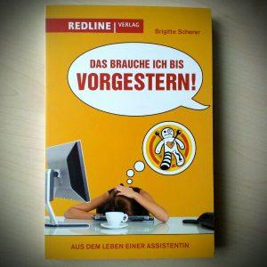 Das brauche ich bis vorgestern Brigitte Scherer Buch Rezension Kritik