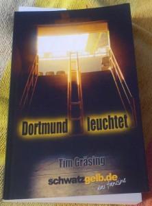 Dortmund leuchtet Tim Gräsing Cover Rezension