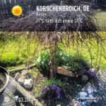 Frühling 2014 Kleinenbroich Blumen