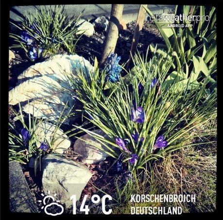 Frühling Kleinenbroich instaweather