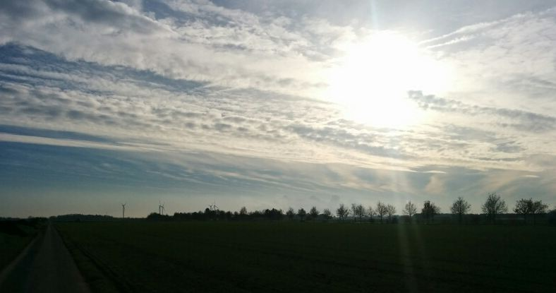 Laufen Eickerender Feld Feldweg Sonne