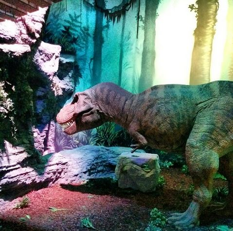 Odysseum Köln Dinosaurier