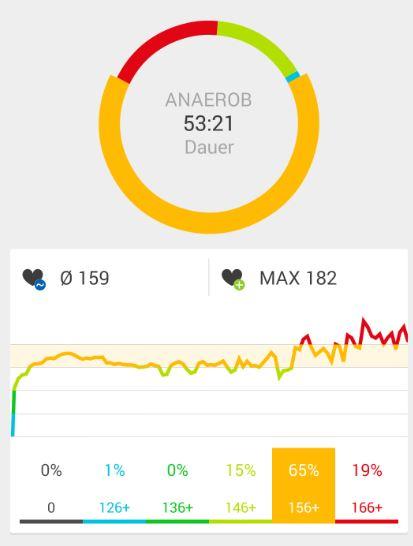 Runtastic Einstellungen Herzfrequenz Auswertung
