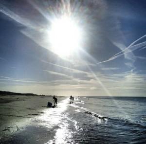Strand Renesse Zeeland Niederlande Holland