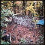 Tree Top Walk Baumkronenpfad Edersee Herbst 2013 Eingang