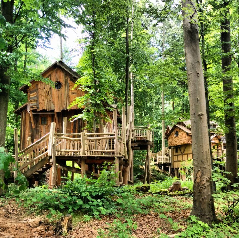 Tripsdrill Natur-Resort Baumhaus Heilbronner Land WanderSüden