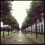 Weg Herbst Regen Allee Bäume Park