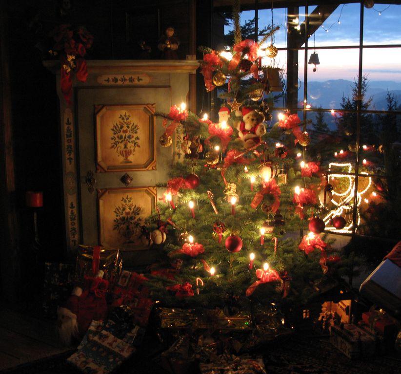 Weihnachten Idylle Weihnachtsbaum Tanne pixelio