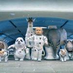 YouTube Video Space Babies 2014 Kia Sorento Big Game Ad - YouTube Kia Viral