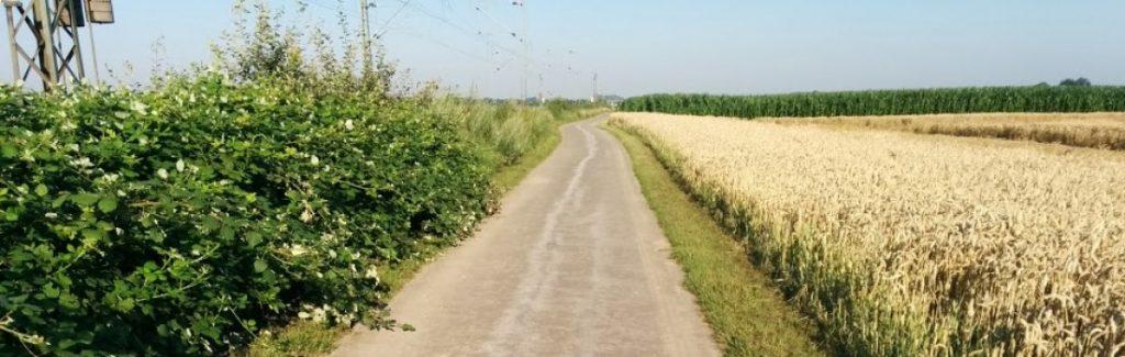Laufen Eickerender Feld Kleinenbroich