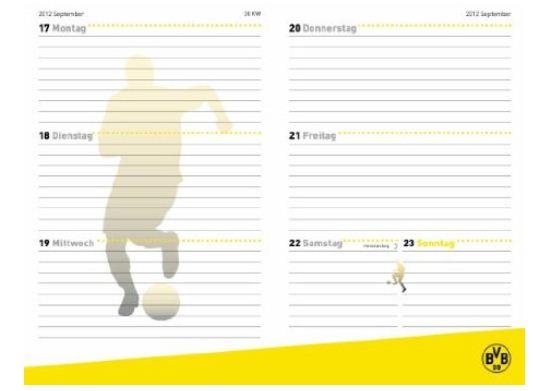 teNeues Schülerkalender 2012 2013 Borussia Dortmund BVB Wochenplan Wochenübersicht Planer Schulplaner